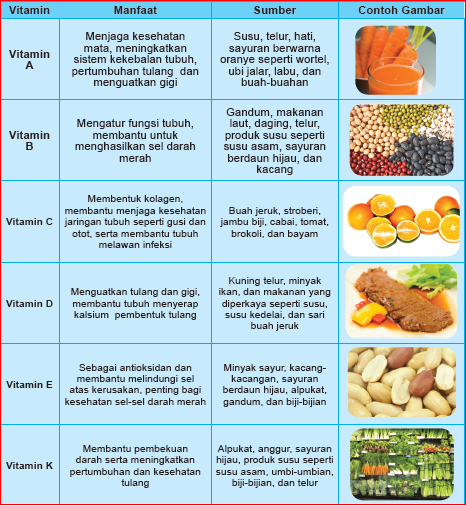Sistem Pencernaan Makanan Erlynarahma